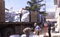 央视《朝闻天下》:山东青岛积极沟通企业 把农资及时送到茶农手中