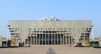 快来打卡!山东博物馆、美术馆、图书馆、文化馆3月31日恢复开放