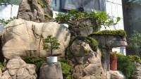 """【我们的美丽庭院】淘石头垒假山 潍坊青州居民用4年时间打造""""山水雅舍"""""""