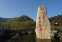 """【地评线】齐鲁网评:坚守""""绿色""""定力,绘就美丽中国画卷"""