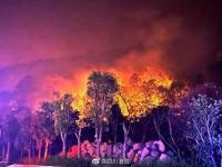 西昌森林火灾最新进展|西昌南线山火今晨复燃,火势已基本控制