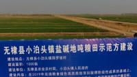 45秒|滨州无棣县探索盐碱地增产增收新路子打造鲁北粮食高产高效示范区