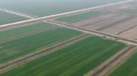35秒|滨州无棣利用无人机喷洒液体肥科技兴农助增收