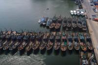 """41秒 威海荣成2000多艘渔船归港 渔民收获伏休前""""最后一网鱼"""""""
