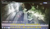 监控拍下暖心一幕:青岛公交驾驶员冒雨清理断枝 保障道路安全