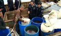 伏季休渔期非法收购鱼海货!威海查获一搜海上收鲜船
