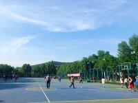 山东省体育中心足篮球主题公园升级改造  具体恢复开放时间待定