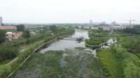 云端赏景丨天然氧吧!快来蓬莱平山河湿地公园亲近大自然