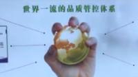 富强滨州企业行|香驰控股:一个产业如何从一粒大豆开始并不断走向强大