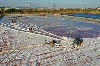 晒海为盐 非遗传承丨跟着老盐工探访威海南海新区晒盐工艺