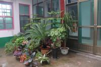 美丽庭院建设在行动!济宁兖州区美丽庭院建设催开文明花