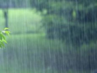 海丽气象吧|未来一周滨州多雷雨或阵雨天气 主要有三次降水过程