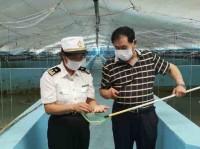 """因""""疫""""施策 青岛海关监管活水生动物出口整体复苏"""